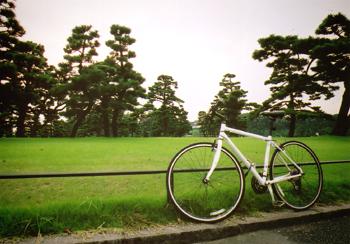 cycle3.jpg