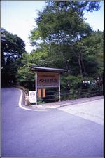 Kurama_02
