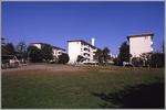 Asagaya2