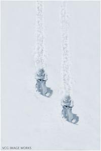 Snowtroopers_fukanmini