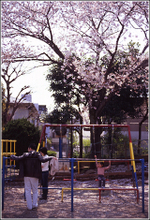 School_senkyo2