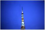 T_tower_shiba_02